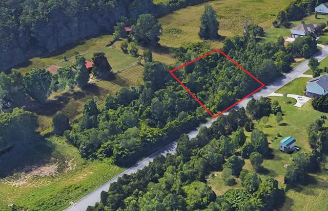 Lot 2 Falcons View Dr, Ringgold, GA 30736 (MLS #1325690) :: Denise Murphy with Keller Williams Realty
