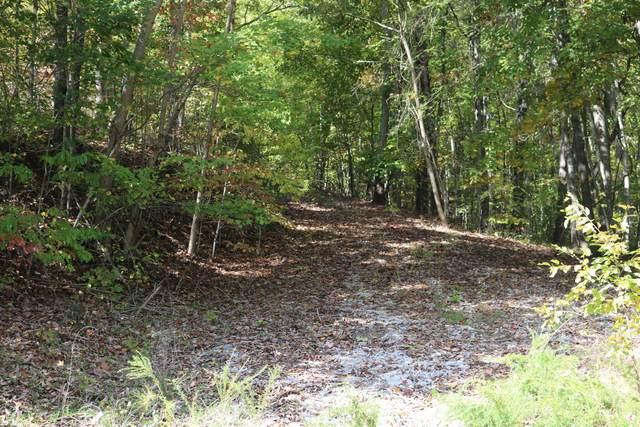 0 Emerald Pointe Cir #5, Rockwood, TN 37854 (MLS #1326093) :: Smith Property Partners
