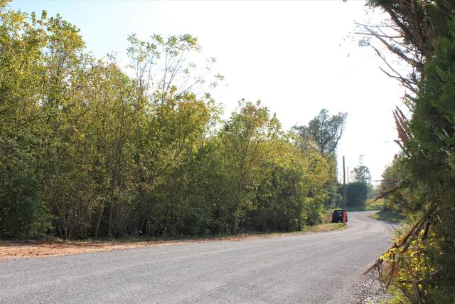 Lot 86-B Young Loop, Jasper, GA 30143 (MLS #1326131) :: The Jooma Team