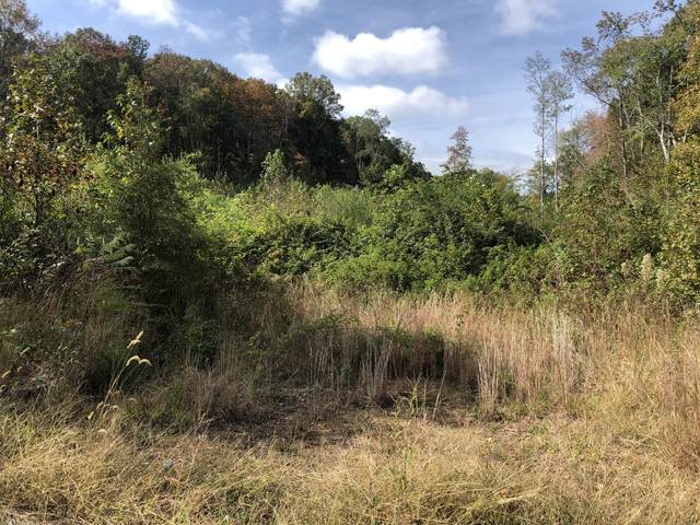 0 County Road 3 Tract 29, Riceville, TN 37370 (MLS #1326197) :: Smith Property Partners