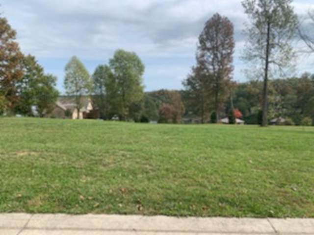 412 Waterfront Way, Spring City, TN 37381 (MLS #1326249) :: Denise Murphy with Keller Williams Realty