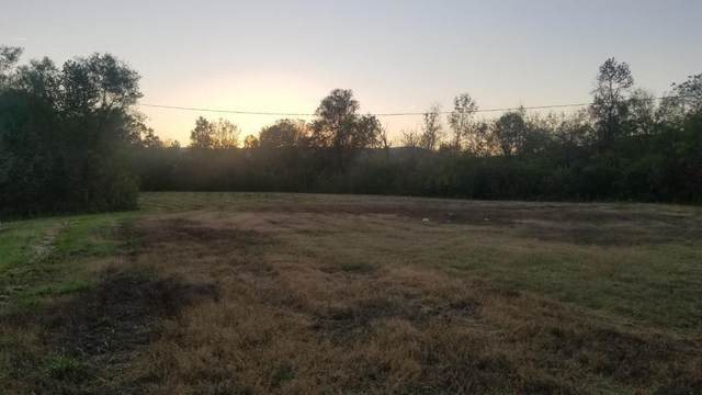 12.9 Acres Rhea County Hwy, Spring City, TN 37381 (MLS #1326467) :: The Robinson Team