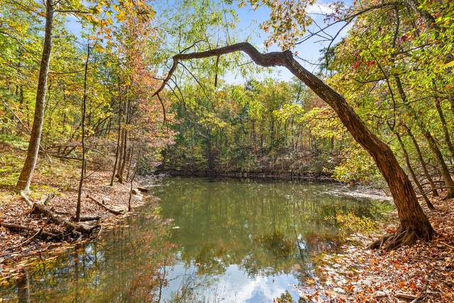 03 Cumberland Rd #3, Chattanooga, TN 37419 (MLS #1326501) :: 7 Bridges Group