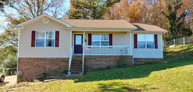 163 NW Mustang Dr, Charleston, TN 37310 (MLS #1327551) :: Austin Sizemore Team