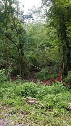 10.13 Acre Stump Hollow Rd, Spring City, TN 37381 (MLS #1327632) :: Chattanooga Property Shop