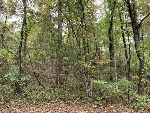 204 Mathes Ln #5, Signal Mountain, TN 37377 (MLS #1328855) :: Chattanooga Property Shop