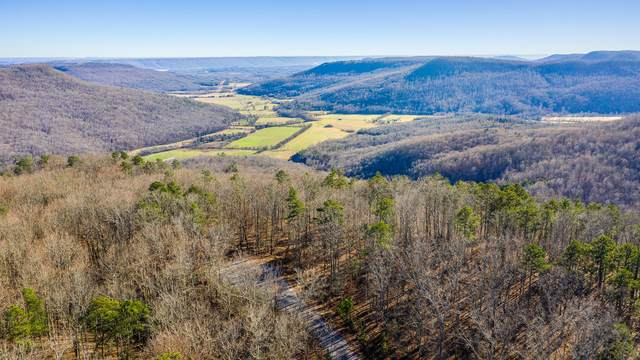 0 Old Harris Turnpike Rd, South Pittsburg, TN 37380 (MLS #1328939) :: Keller Williams Realty | Barry and Diane Evans - The Evans Group
