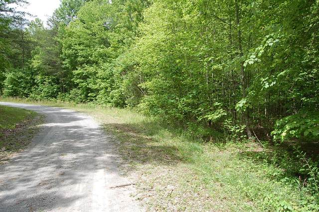 7 Bear Wallow Rd, Dunlap, TN 37327 (MLS #1329124) :: The Edrington Team