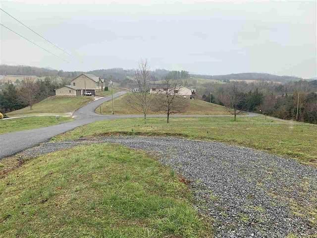 315 Oak Hammond Ln, Parrottsville, TN 37843 (MLS #1329194) :: Austin Sizemore Team