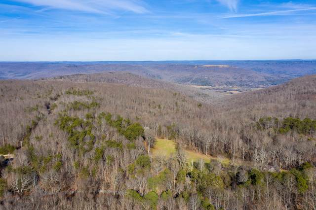 480 Bolton Point Rd, South Pittsburg, TN 37380 (MLS #1329262) :: The Weathers Team