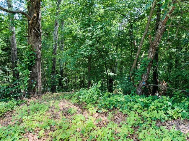 6826 Ridge Creek Dr #28, Ooltewah, TN 37363 (MLS #1329679) :: The Hollis Group