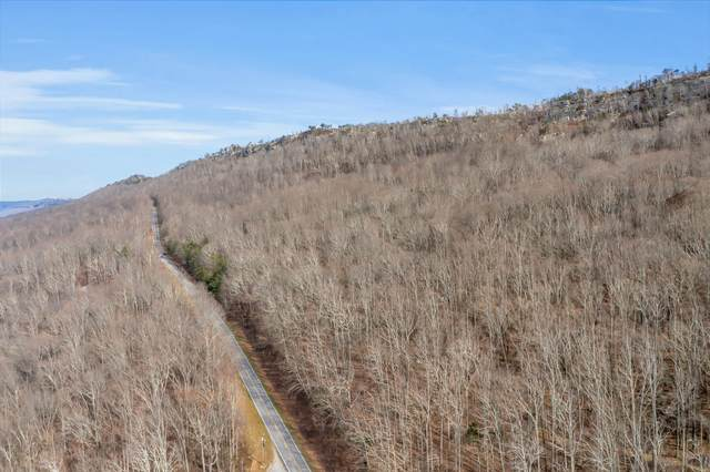 0 Burkhalter Gap Rd, Rising Fawn, GA 30738 (MLS #1329950) :: The Robinson Team