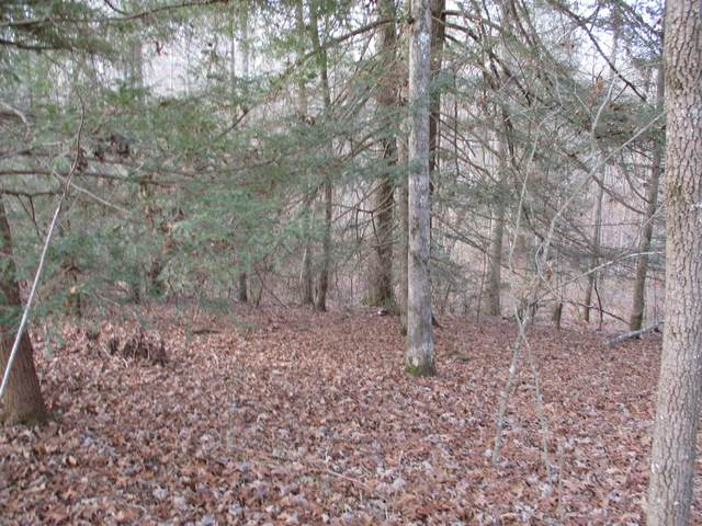 00 Mt Laurel Rd #10, Pikeville, TN 37367 (MLS #1330050) :: Smith Property Partners