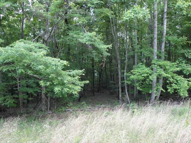0 Saddletree Ln, Sewanee, TN 37383 (MLS #1330073) :: The Hollis Group