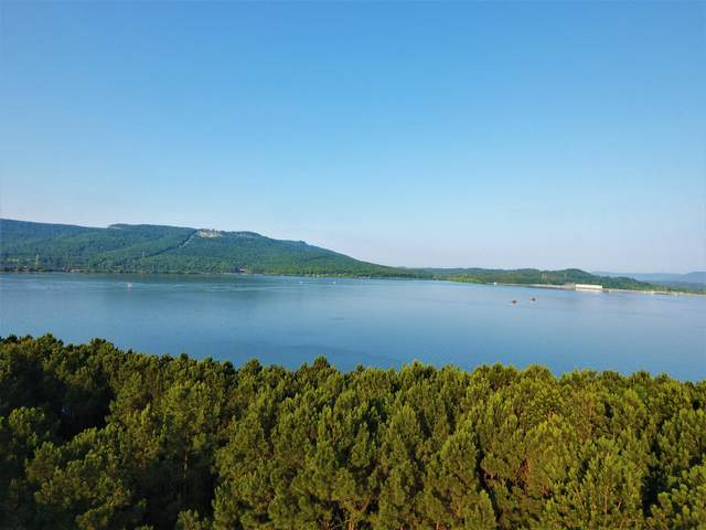 0 Castaway Ln #78, Jasper, TN 37347 (MLS #1330382) :: The Mark Hite Team