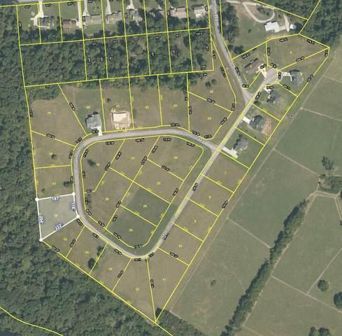 405 Overlook Dr, Dayton, TN 37321 (MLS #1330420) :: Chattanooga Property Shop