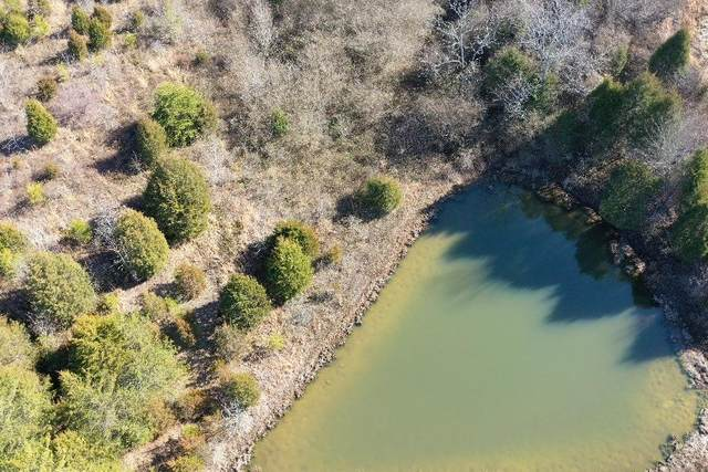6 Treeline Dr, Dunlap, TN 37327 (MLS #1330705) :: The Hollis Group
