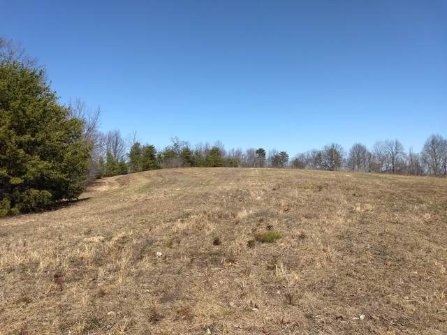 375 Acres Blackburnhollow/Ooltewahgeorge, Cleveland, TN 37312 (MLS #1331014) :: The Hollis Group