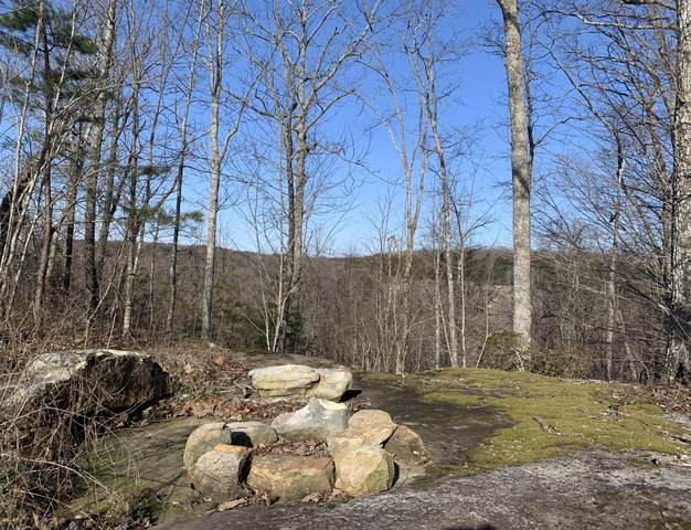 Lot 1 Wildcat Tr, Dayton, TN 37321 (MLS #1332142) :: The Chattanooga's Finest | The Group Real Estate Brokerage