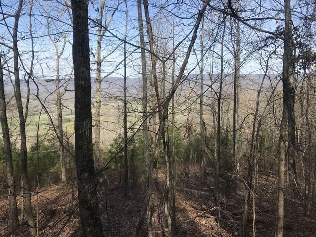 0 Ditch Gap Rd, Whitwell, TN 37397 (MLS #1333320) :: The Robinson Team