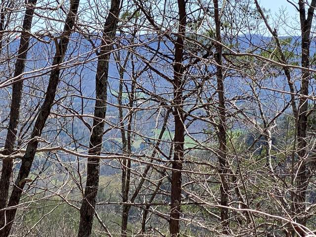 Lot 2 Keener Hill Road Lot 2, Pikeville, TN 37367 (MLS #1333697) :: Austin Sizemore Team