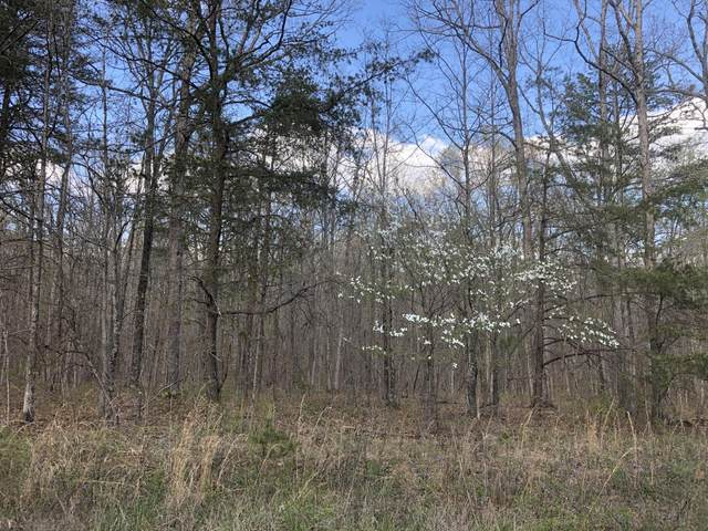 0 White Oak Swamp Rd, Dunlap, TN 37327 (MLS #1334500) :: The Chattanooga's Finest | The Group Real Estate Brokerage
