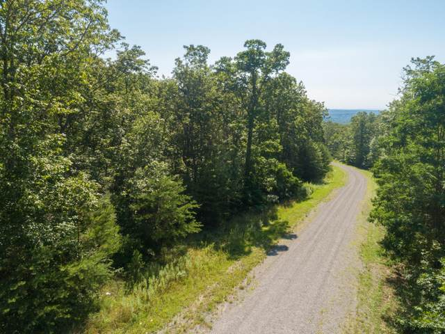 00 Forest View Ln Lot 31, Dunlap, TN 37327 (MLS #1334581) :: EXIT Realty Scenic Group