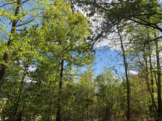 00 NW East Ave, Benton, TN 37307 (MLS #1334590) :: Denise Murphy with Keller Williams Realty