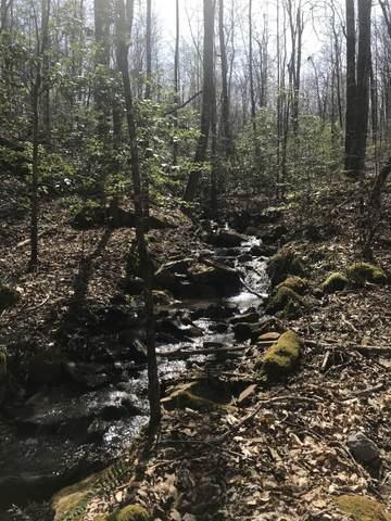 0 Wilderness Way #549, Dunlap, TN 37327 (MLS #1334755) :: The Robinson Team