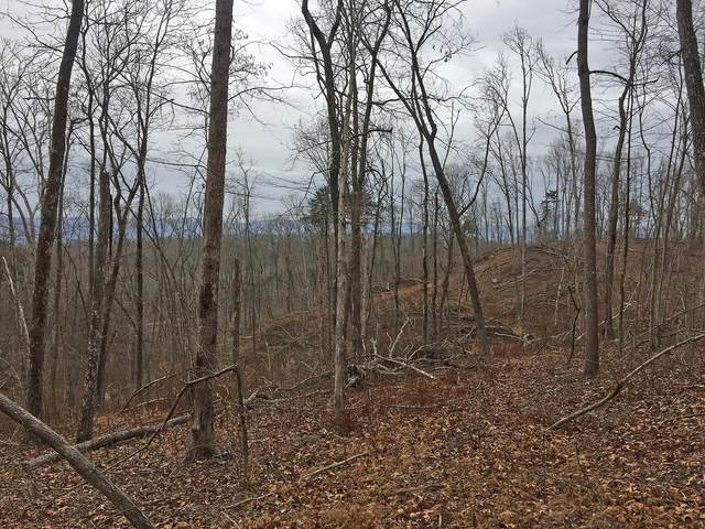 34.1 Bench Rd, Pikeville, TN 37367 (MLS #1334774) :: The Robinson Team