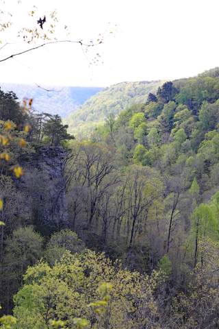 0 Monteagle Falls Rd #53, Monteagle, TN 37356 (MLS #1334828) :: The Jooma Team