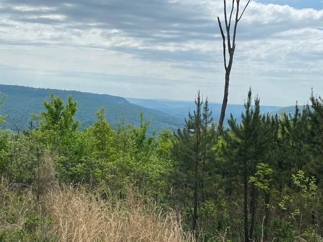 Lot 7 Jackson Point Road Lot 7, Sewanee, TN 37375 (MLS #1335067) :: Keller Williams Greater Downtown Realty | Barry and Diane Evans - The Evans Group