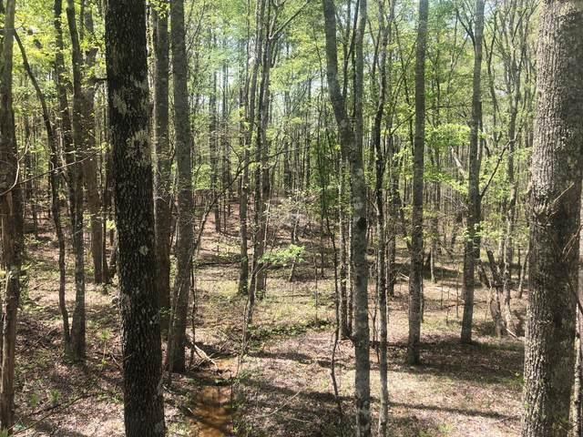 5 Ross Creek Rd, Palmer, TN 37365 (MLS #1335154) :: Chattanooga Property Shop