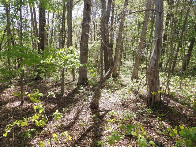 01 Barbee Cemetery Rd #01, Pikeville, TN 37367 (MLS #1335490) :: The Robinson Team