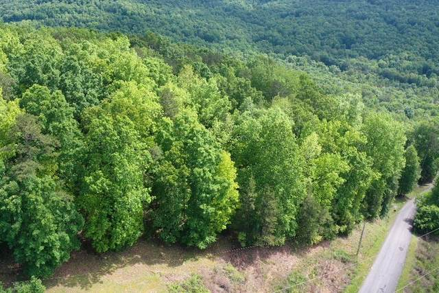 0 Bluffs Rd S, Lots 36, 37, 38, South Pittsburg, TN 37380 (MLS #1335731) :: The Robinson Team