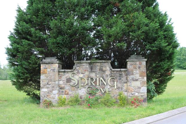 0 Spring Cove Ln #4, Spring City, TN 37381 (MLS #1335824) :: The Jooma Team