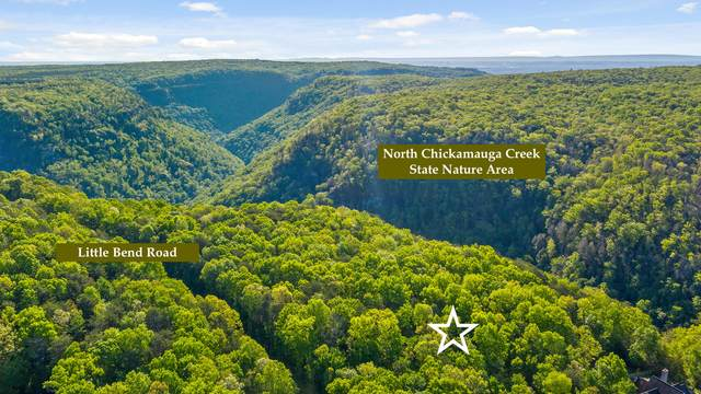 2266 Little Bend Rd, Signal Mountain, TN 37377 (MLS #1335869) :: Chattanooga Property Shop