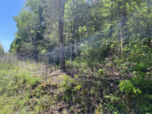 Lot 5 Womac Hollow Road, Ten Mile, TN 37880 (MLS #1335977) :: Smith Property Partners