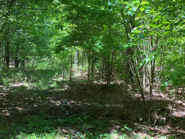 Lot 1 Browns Trace Road Lot 1, South Pittsburg, TN 37380 (MLS #1336002) :: The Robinson Team