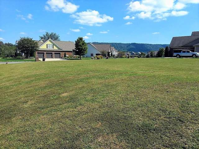 8316 Georgetown Bay Dr, Ooltewah, TN 37363 (MLS #1336063) :: EXIT Realty Scenic Group