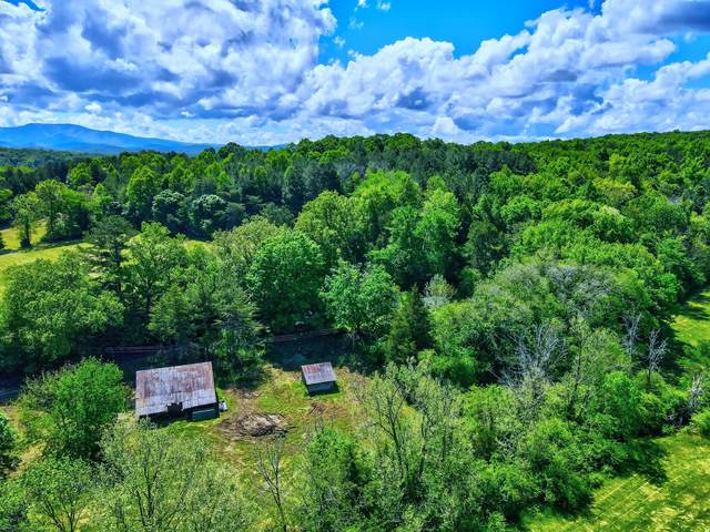 801 Cookson Creek Rd, Ocoee, TN 37361 (MLS #1336096) :: Keller Williams Realty | Barry and Diane Evans - The Evans Group