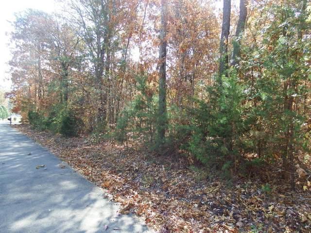 31 & 33 Blue Sewanee Rd 31 & 33, Dunlap, TN 37327 (MLS #1336134) :: Chattanooga Property Shop