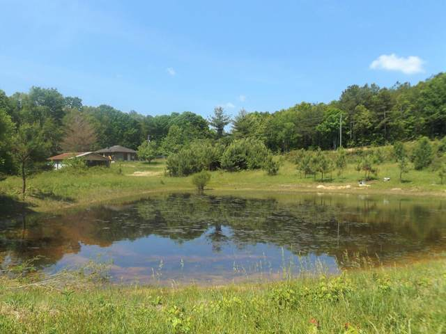604 Grant Rd, Trenton, GA 30752 (MLS #1336530) :: EXIT Realty Scenic Group
