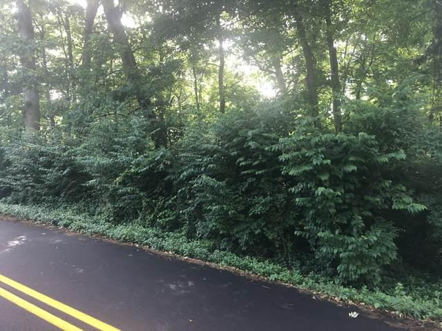 411 Georgia Ave, Signal Mountain, TN 37377 (MLS #1337008) :: The Mark Hite Team