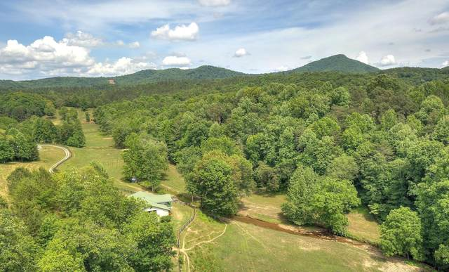 000 Stivers Rd, Jasper, GA 30143 (MLS #1337225) :: EXIT Realty Scenic Group