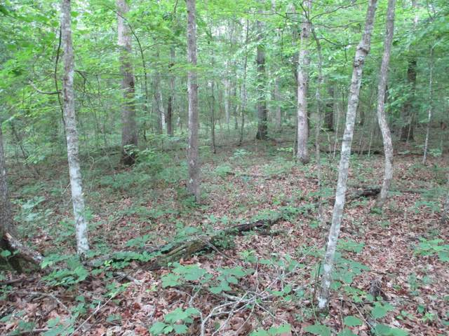 00 Mountain Place Rd #16, Dunlap, TN 37327 (MLS #1337349) :: Smith Property Partners