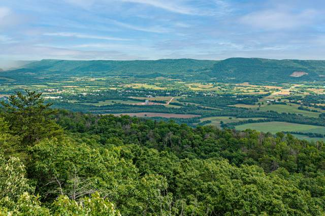 Lot 46 A+B Gray Rock Vw, Pikeville, TN 37367 (MLS #1337441) :: Keller Williams Greater Downtown Realty | Barry and Diane Evans - The Evans Group