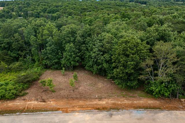 Lot 220 Gray Rock Vw, Pikeville, TN 37367 (MLS #1337661) :: The Hollis Group