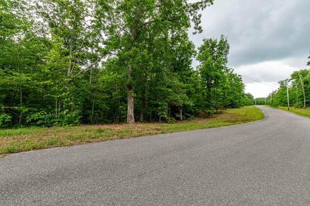 Lot 111 Gray Rock Vw, Pikeville, TN 37367 (MLS #1337662) :: The Hollis Group