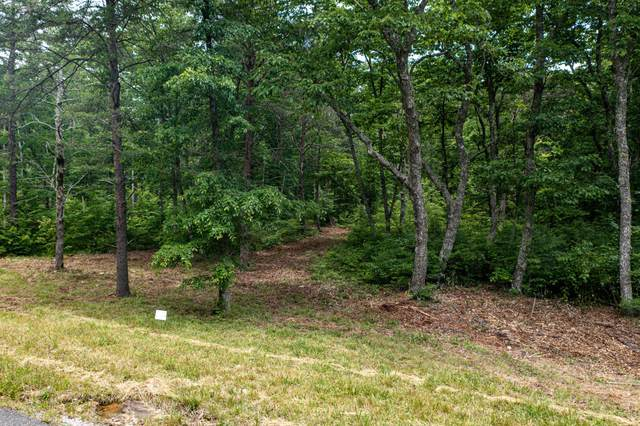 Lot 101 Gray Rock Vw, Pikeville, TN 37367 (MLS #1337689) :: EXIT Realty Scenic Group